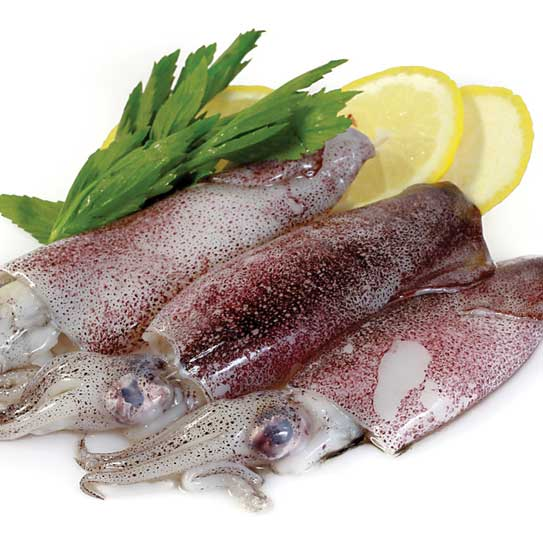 Para-que-los-calamares-no-queden-duros